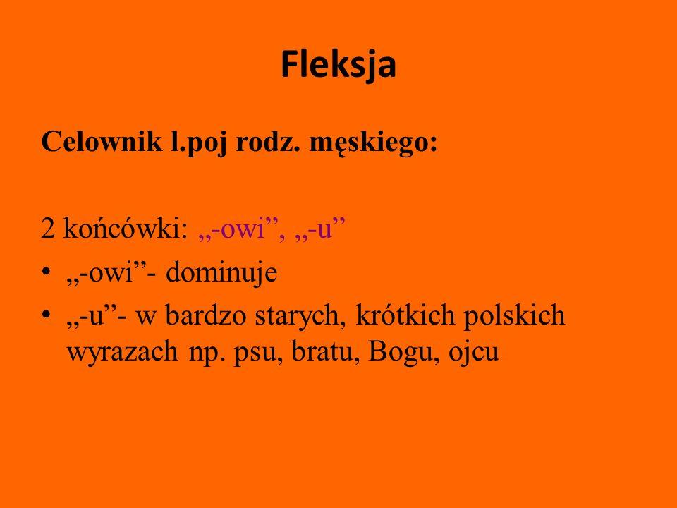 """Fleksja Celownik l.poj rodz. męskiego: 2 końcówki: """"-owi , """"-u"""