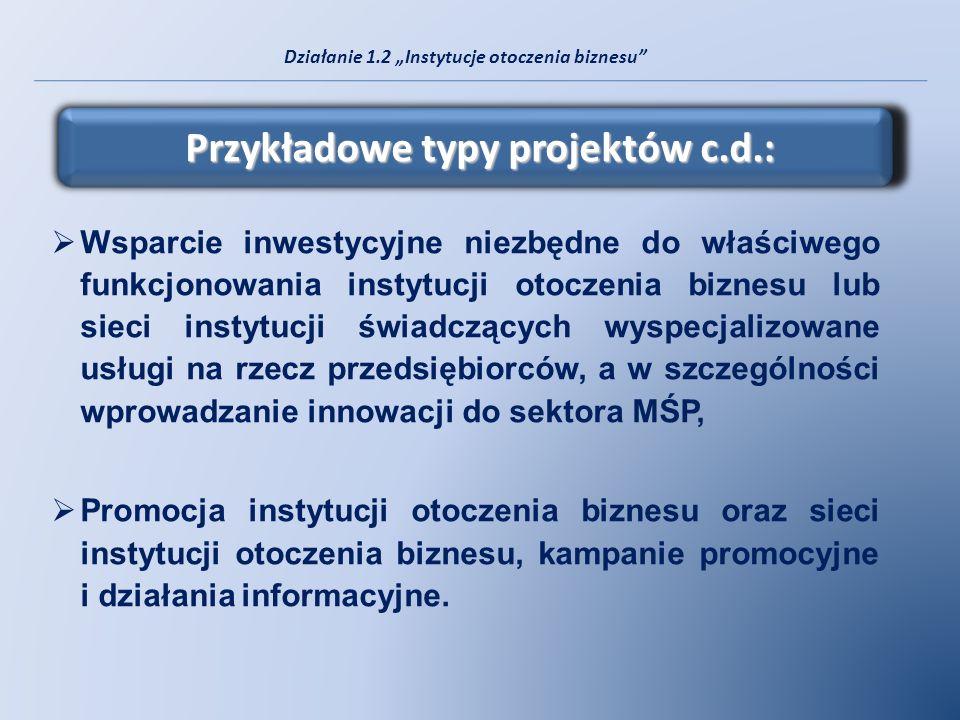 Przykładowe typy projektów c.d.: