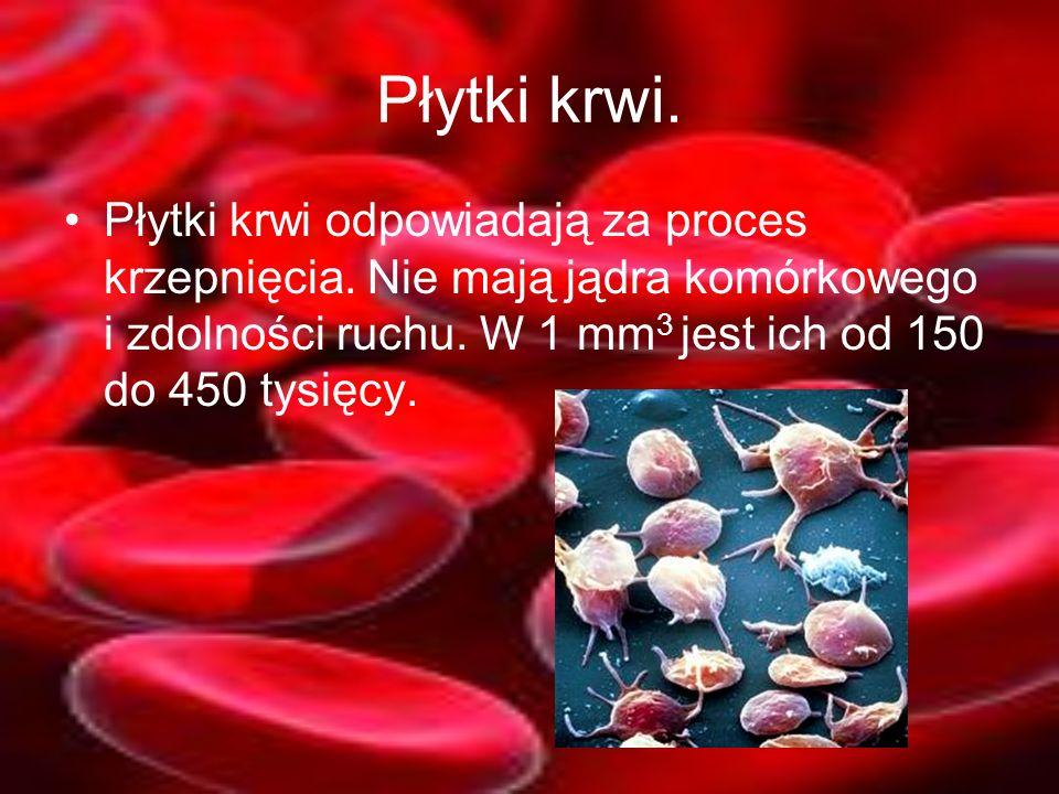 Płytki krwi. Płytki krwi odpowiadają za proces krzepnięcia.