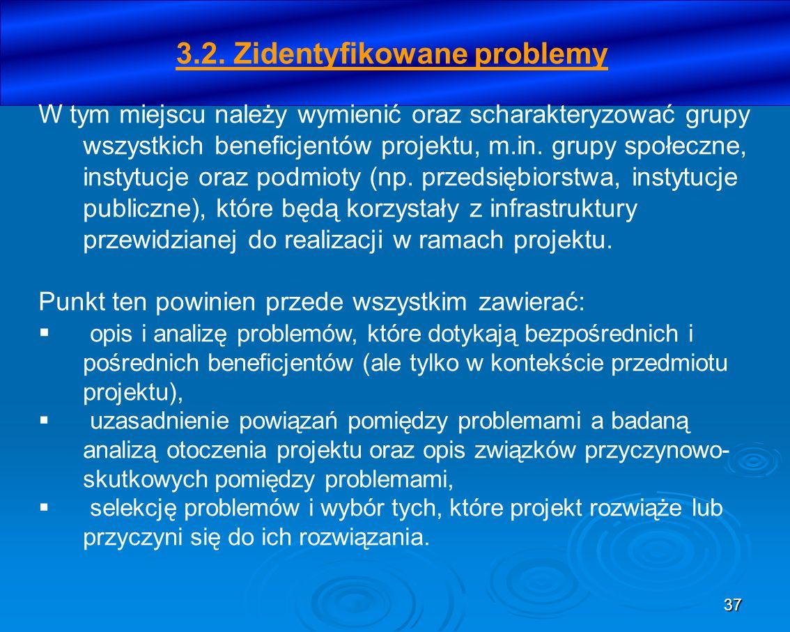 3.2. Zidentyfikowane problemy