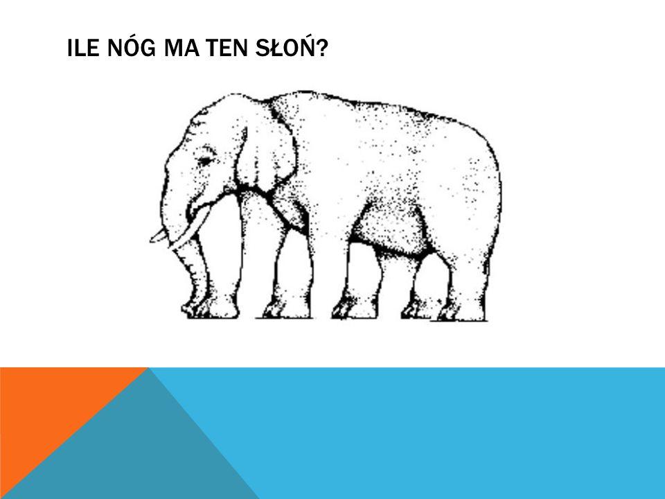 Ile Nóg Ma ten słoń