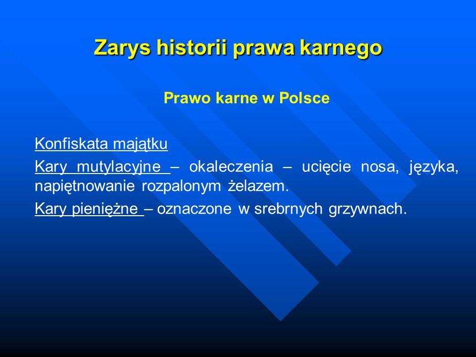 Zarys historii prawa karnego