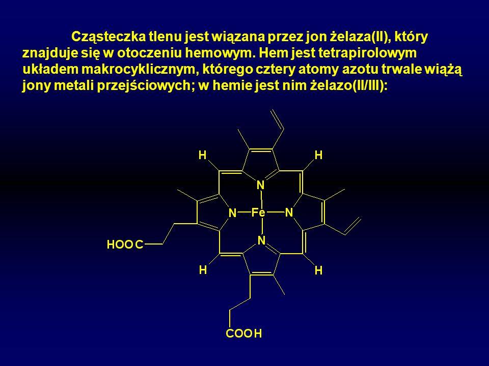 Cząsteczka tlenu jest wiązana przez jon żelaza(II), który znajduje się w otoczeniu hemowym.