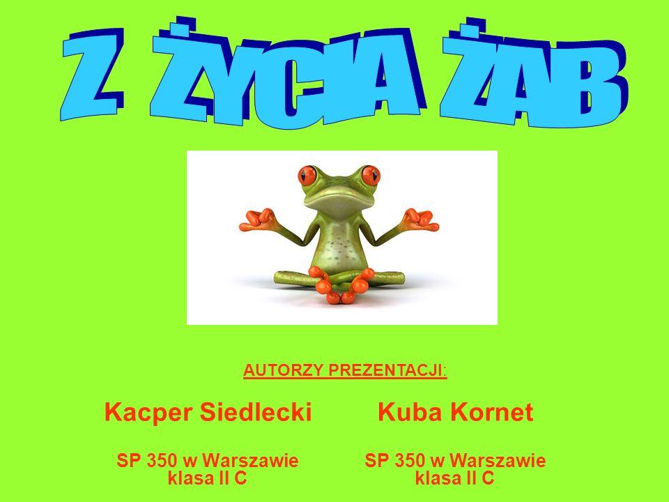 Kacper Siedlecki SP 350 w Warszawie klasa II C