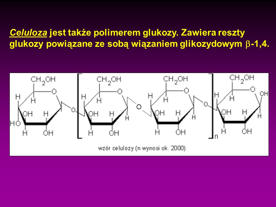 Celuloza jest także polimerem glukozy