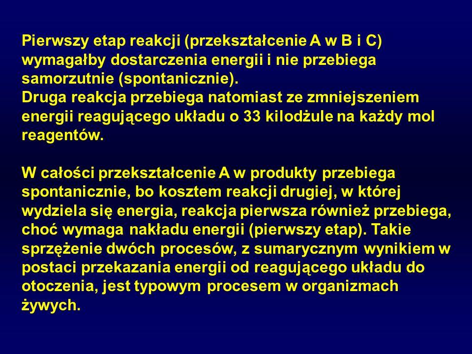 Pierwszy etap reakcji (przekształcenie A w B i C) wymagałby dostarczenia energii i nie przebiega samorzutnie (spontanicznie).