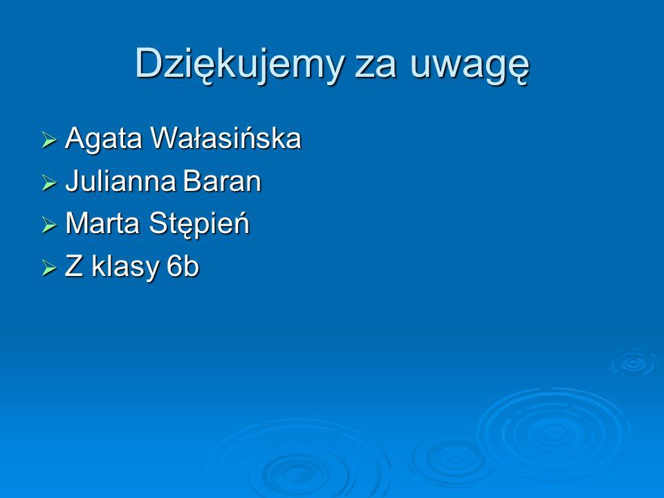 Dziękujemy za uwagę Agata Wałasińska Julianna Baran Marta Stępień