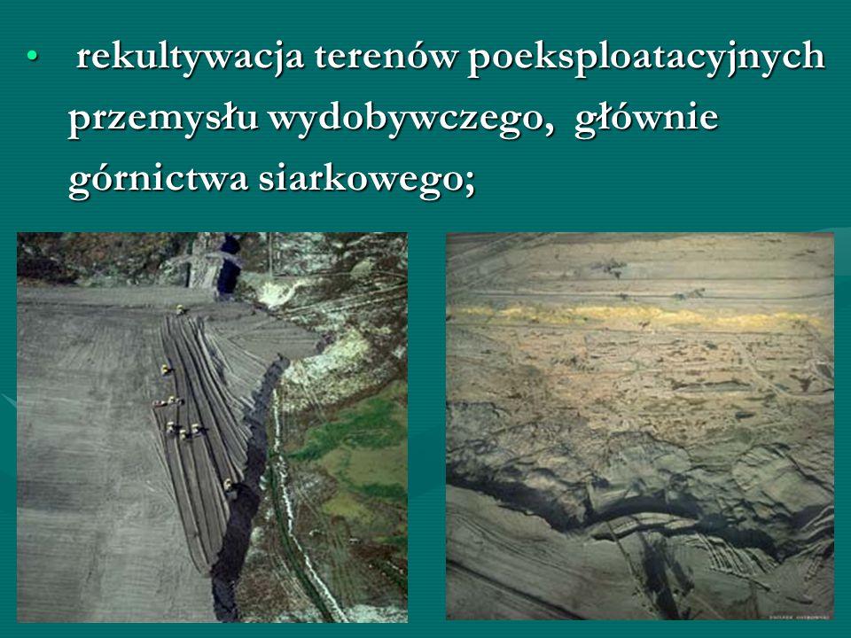 przemysłu wydobywczego, głównie górnictwa siarkowego;