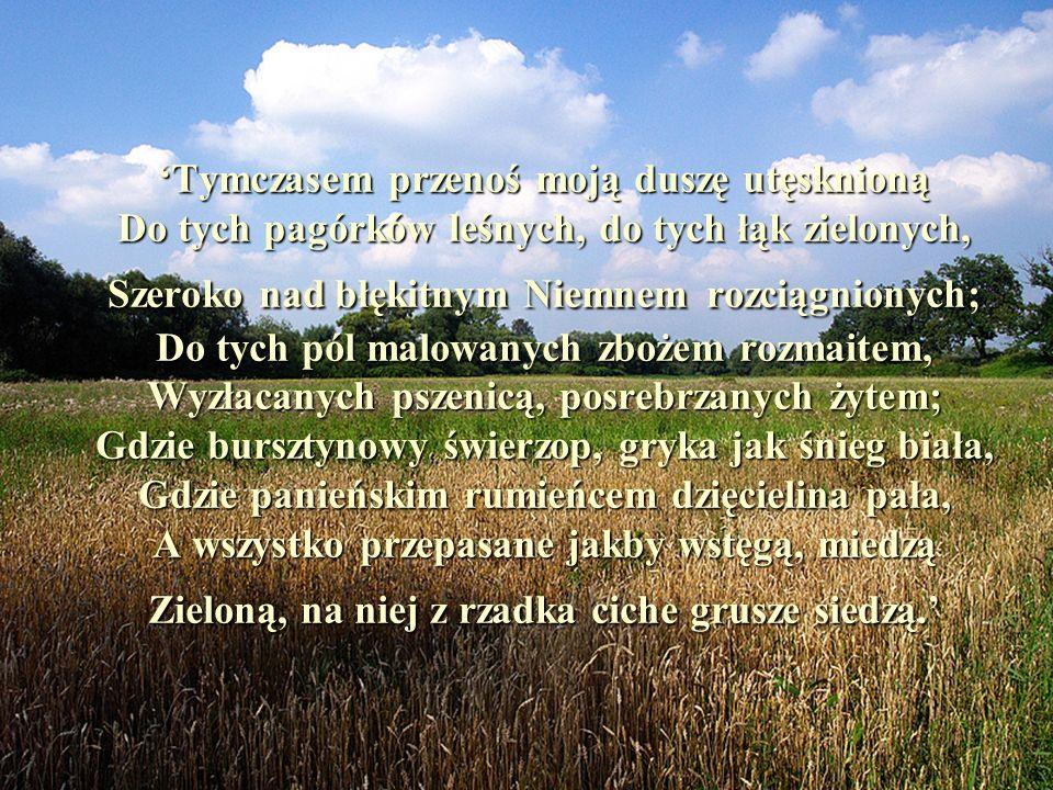 'Tymczasem przenoś moją duszę utęsknioną Do tych pagórków leśnych, do tych łąk zielonych, Szeroko nad błękitnym Niemnem rozciągnionych; Do tych pól malowanych zbożem rozmaitem, Wyzłacanych pszenicą, posrebrzanych żytem; Gdzie bursztynowy świerzop, gryka jak śnieg biała, Gdzie panieńskim rumieńcem dzięcielina pała, A wszystko przepasane jakby wstęgą, miedzą Zieloną, na niej z rzadka ciche grusze siedzą.'