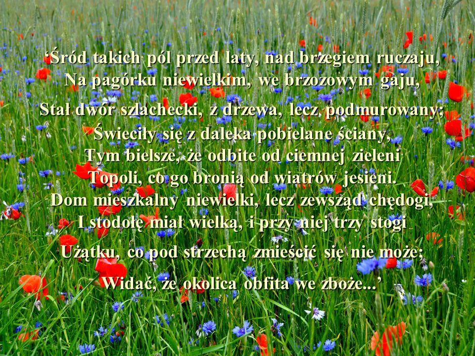 'Śród takich pól przed laty, nad brzegiem ruczaju, Na pagórku niewielkim, we brzozowym gaju, Stał dwór szlachecki, z drzewa, lecz podmurowany; Świeciły się z daleka pobielane ściany, Tym bielsze, że odbite od ciemnej zieleni Topoli, co go bronią od wiatrów jesieni.
