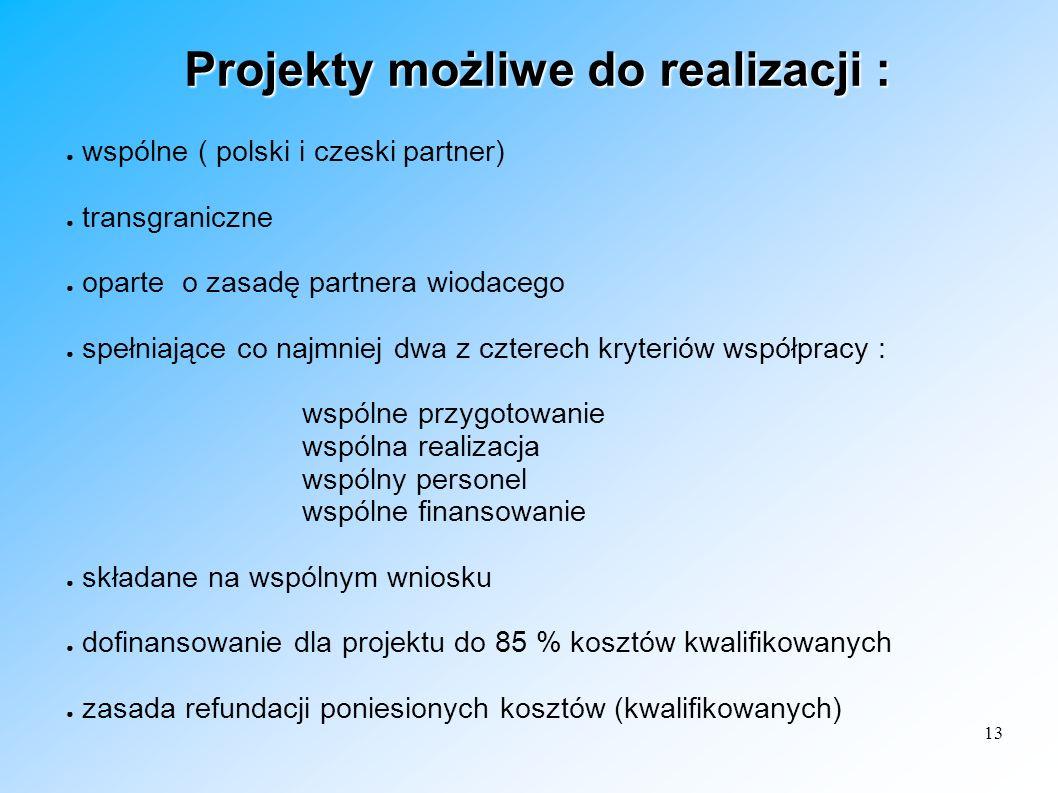 Projekty możliwe do realizacji :
