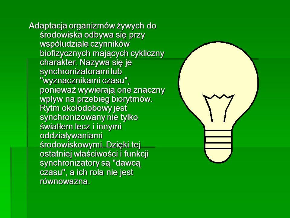 Adaptacja organizmów żywych do środowiska odbywa się przy współudziale czynników biofizycznych mających cykliczny charakter.
