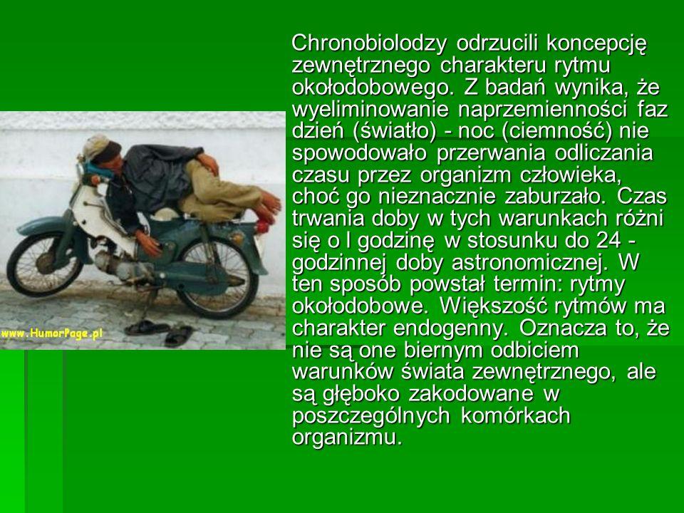 Chronobiolodzy odrzucili koncepcję zewnętrznego charakteru rytmu okołodobowego.