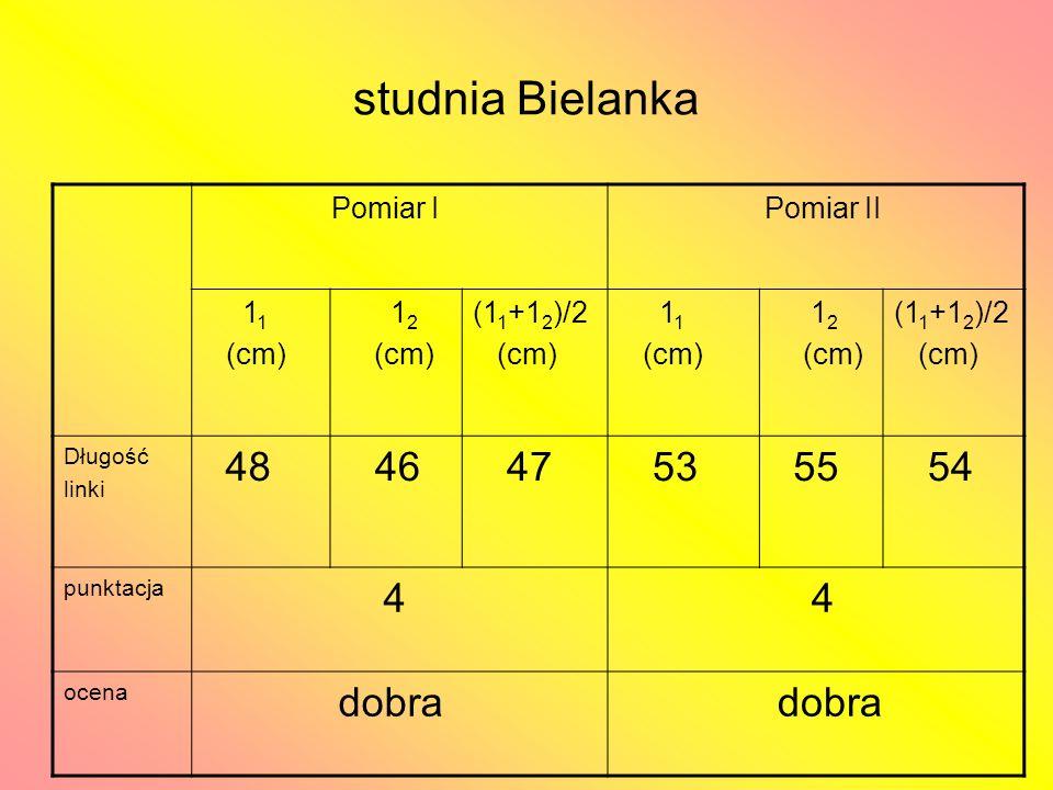 studnia Bielanka 48 46 47 53 55 54 4 dobra Pomiar I Pomiar II 11 (cm)