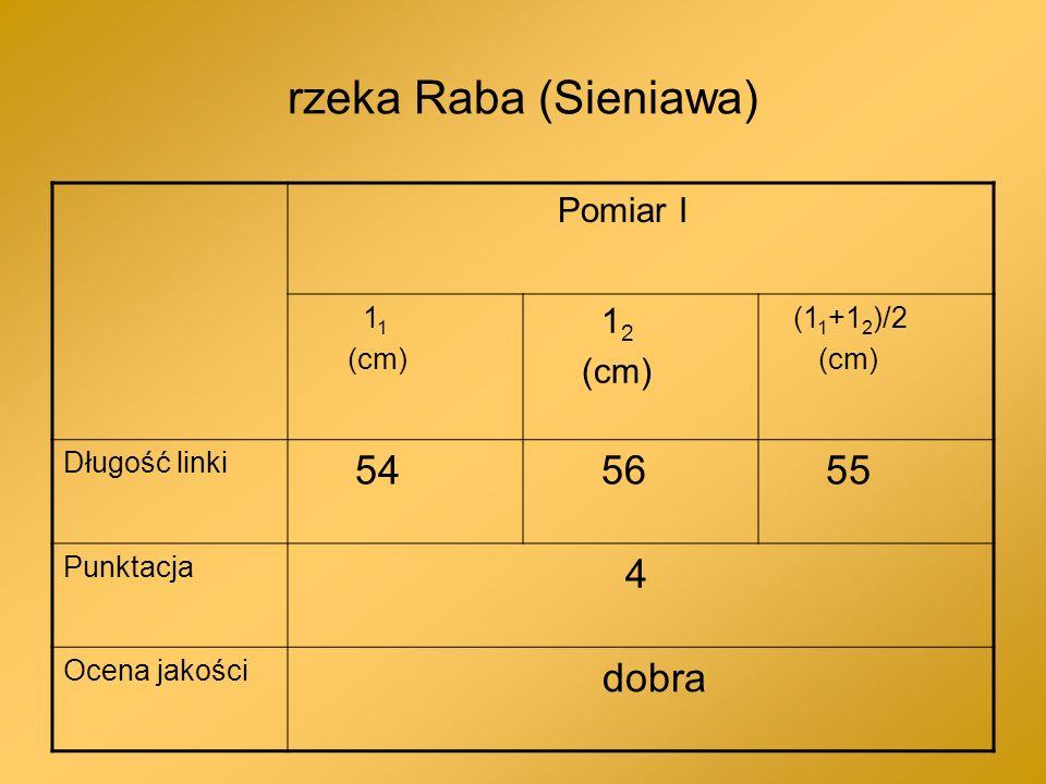 rzeka Raba (Sieniawa) 54 56 55 4 dobra Pomiar I 12 11 (cm) (11+12)/2