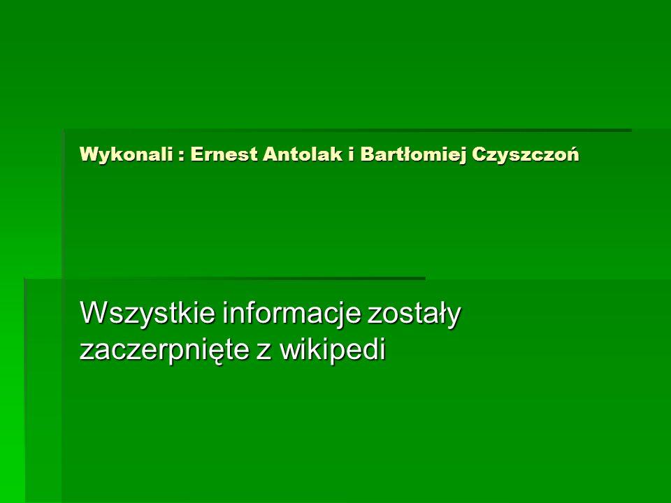 Wykonali : Ernest Antolak i Bartłomiej Czyszczoń