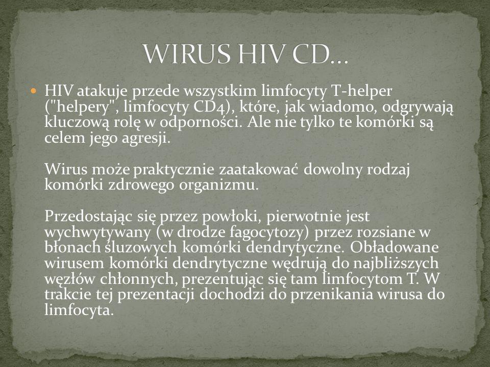 WIRUS HIV CD…