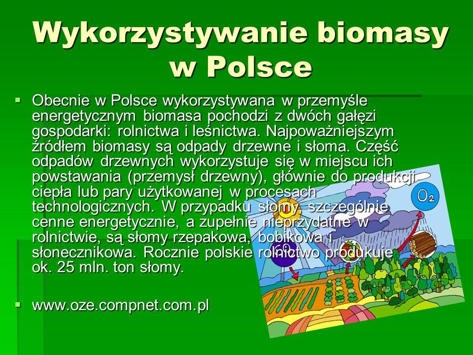 Wykorzystywanie biomasy w Polsce