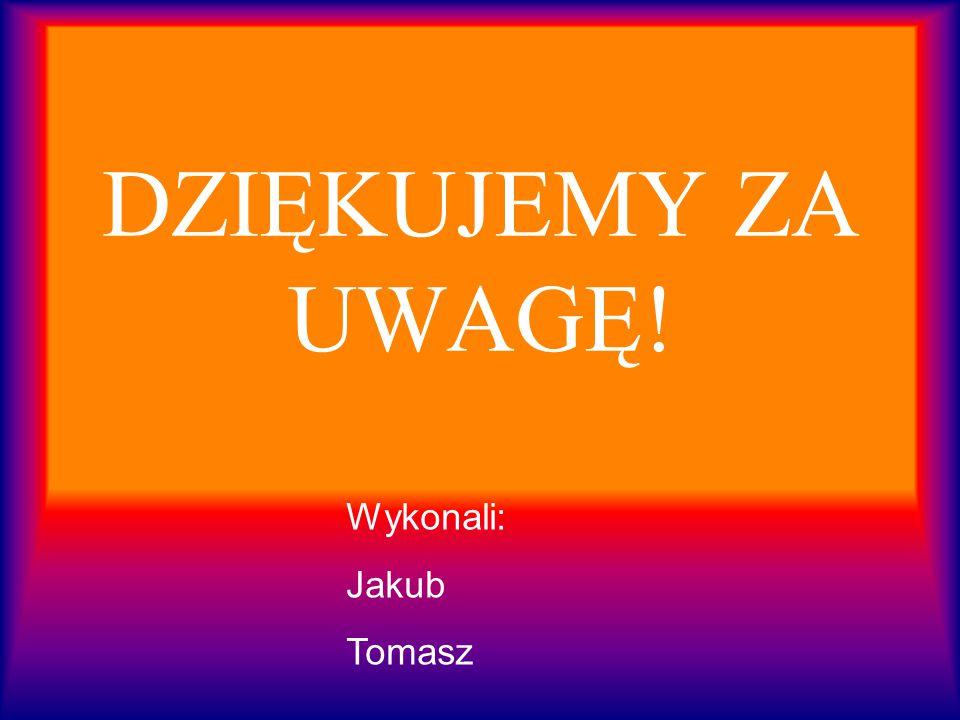 DZIĘKUJEMY ZA UWAGĘ! Wykonali: Jakub Tomasz