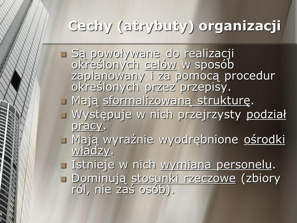 Cechy (atrybuty) organizacji