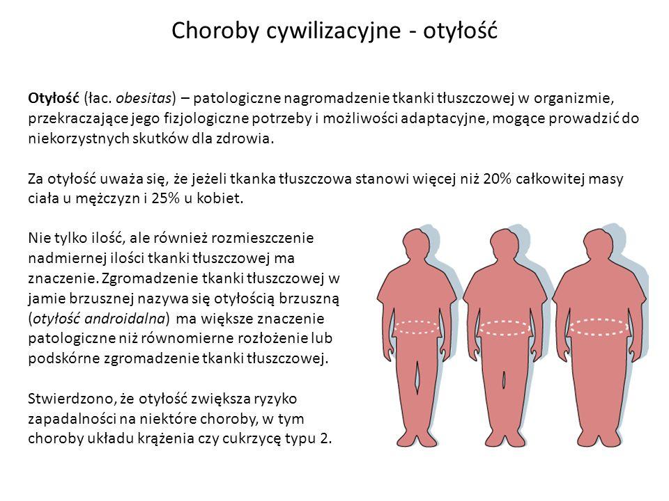 Choroby cywilizacyjne - otyłość