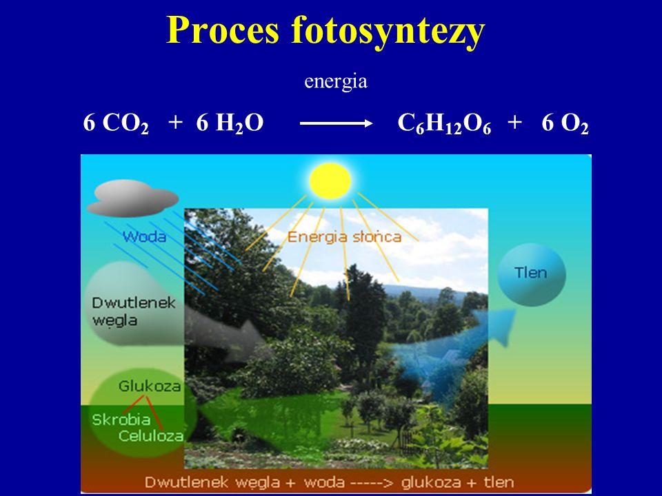 Proces fotosyntezy energia 6 CO2 + 6 H2O C6H12O6 + 6 O2