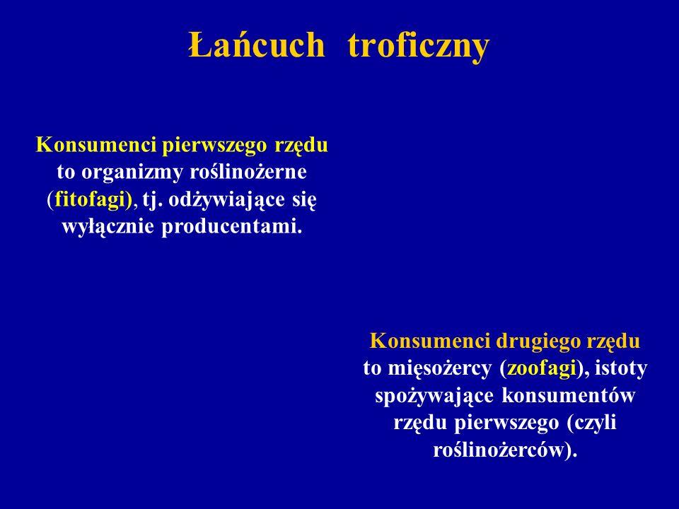 Łańcuch troficzny Konsumenci pierwszego rzędu to organizmy roślinożerne (fitofagi), tj. odżywiające się wyłącznie producentami.