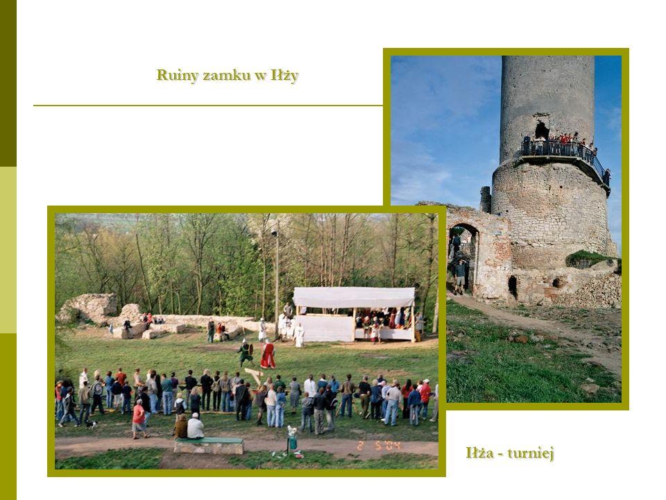 Ruiny zamku w Iłży Iłża - turniej