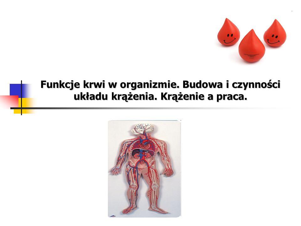Funkcje krwi w organizmie. Budowa i czynności układu krążenia
