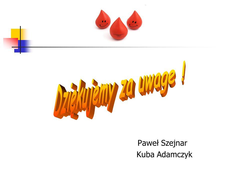 Paweł Szejnar Kuba Adamczyk Dziękujemy za uwage !