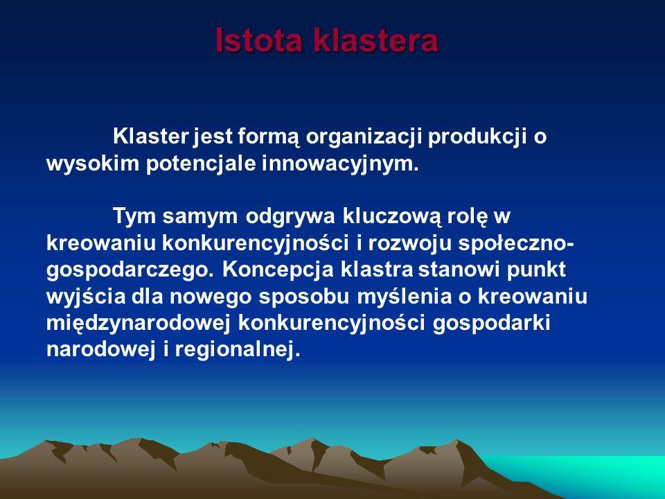 Istota klastera Klaster jest formą organizacji produkcji o wysokim potencjale innowacyjnym.