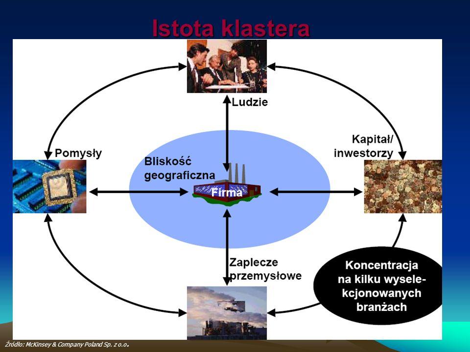Istota klastera Źródło: McKinsey & Company Poland Sp. z o.o.
