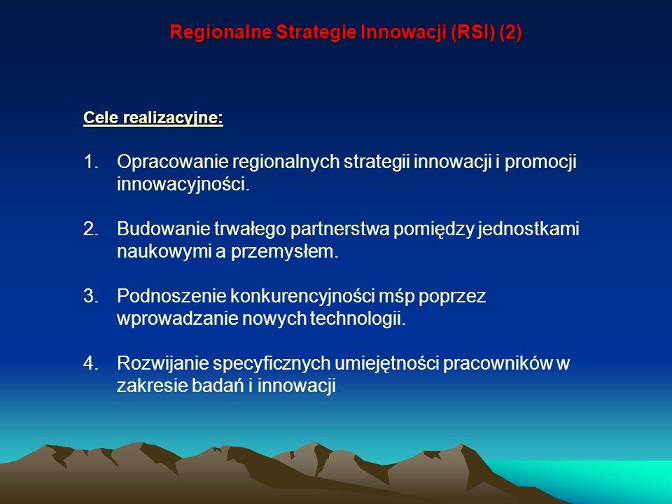 Regionalne Strategie Innowacji (RSI) (2)