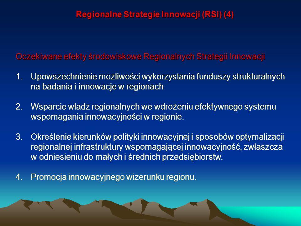 Regionalne Strategie Innowacji (RSI) (4)