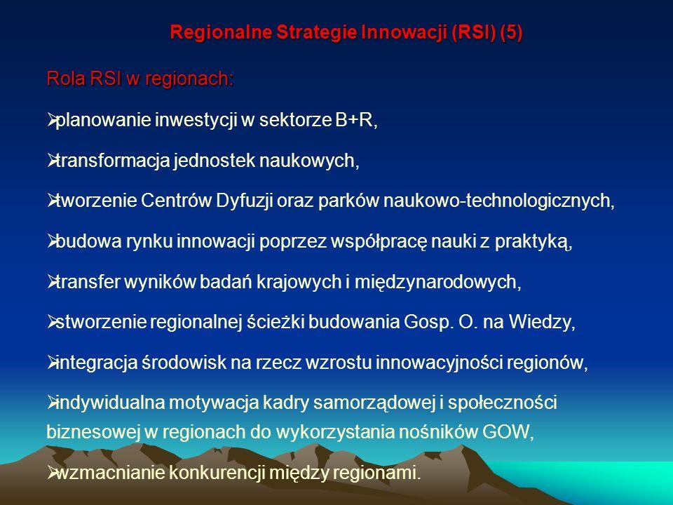Regionalne Strategie Innowacji (RSI) (5)