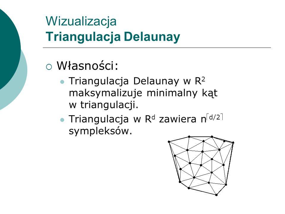 Wizualizacja Triangulacja Delaunay