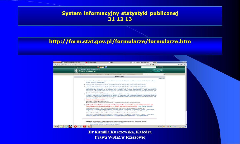 System informacyjny statystyki publicznej 31 12 13