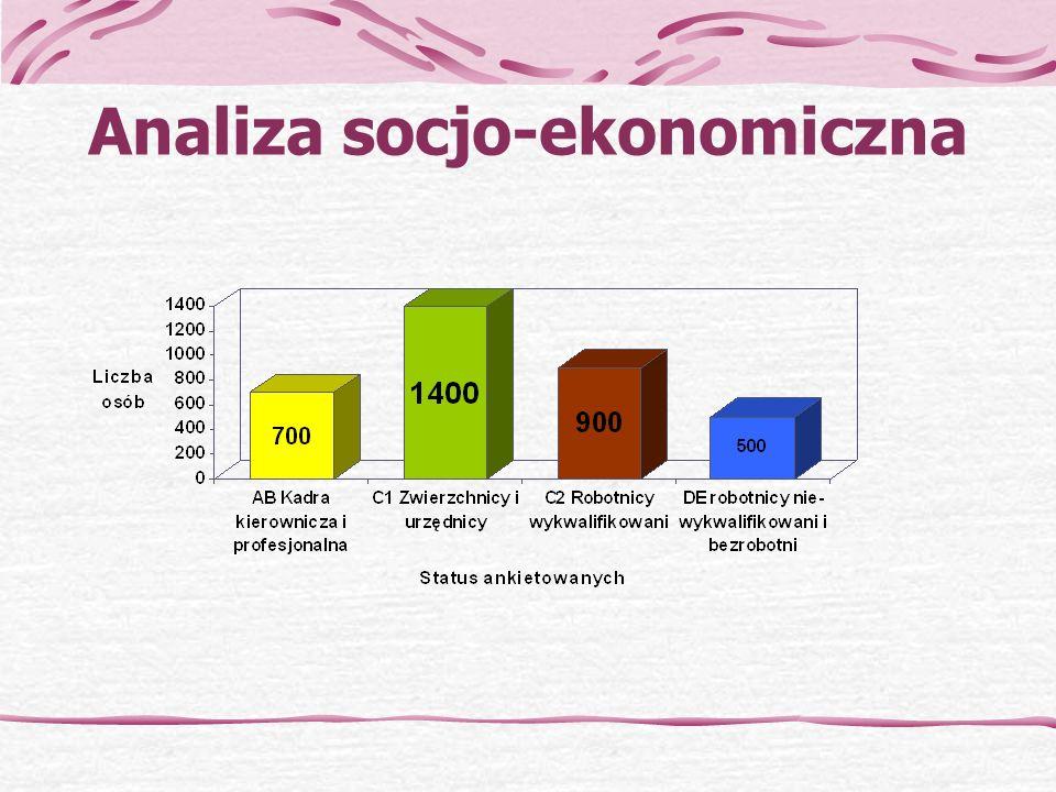 Analiza socjo-ekonomiczna