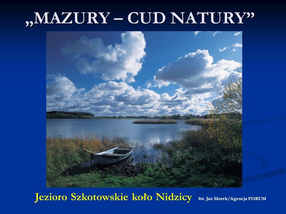 """""""MAZURY – CUD NATURY Jezioro Szkotowskie koło Nidzicy fot. Jan Morek/Agencja FORUM"""