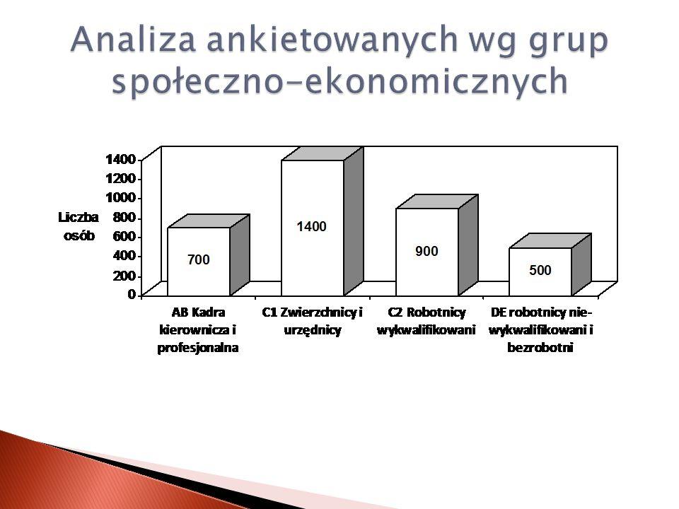 Analiza ankietowanych wg grup społeczno-ekonomicznych