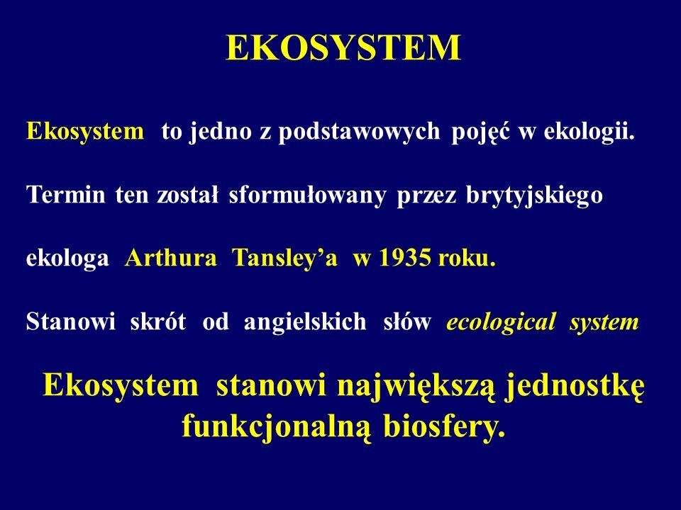 Ekosystem stanowi największą jednostkę