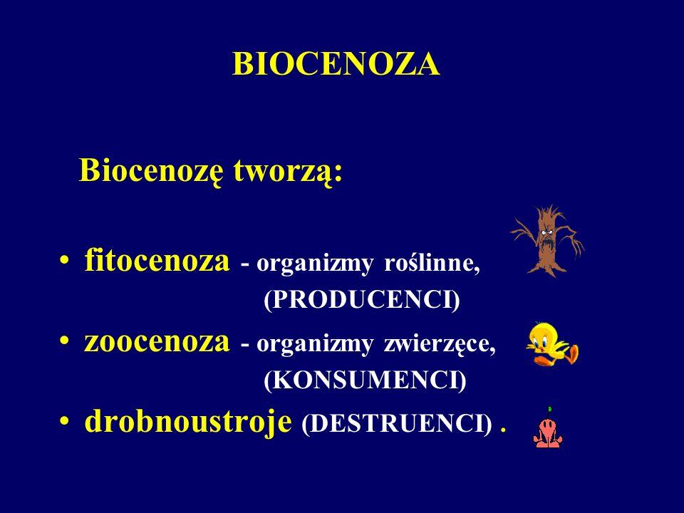 fitocenoza - organizmy roślinne, zoocenoza - organizmy zwierzęce,