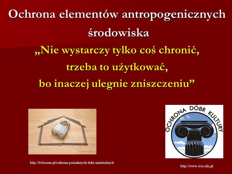 Ochrona elementów antropogenicznych środowiska
