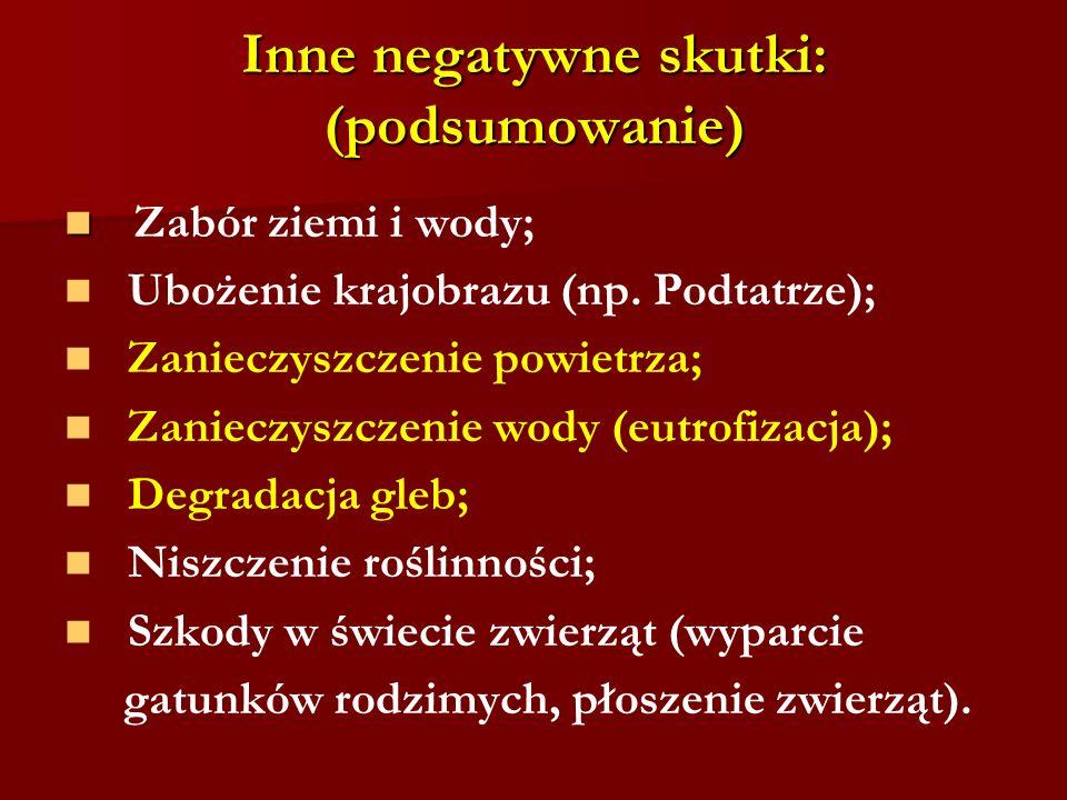 Inne negatywne skutki: (podsumowanie)