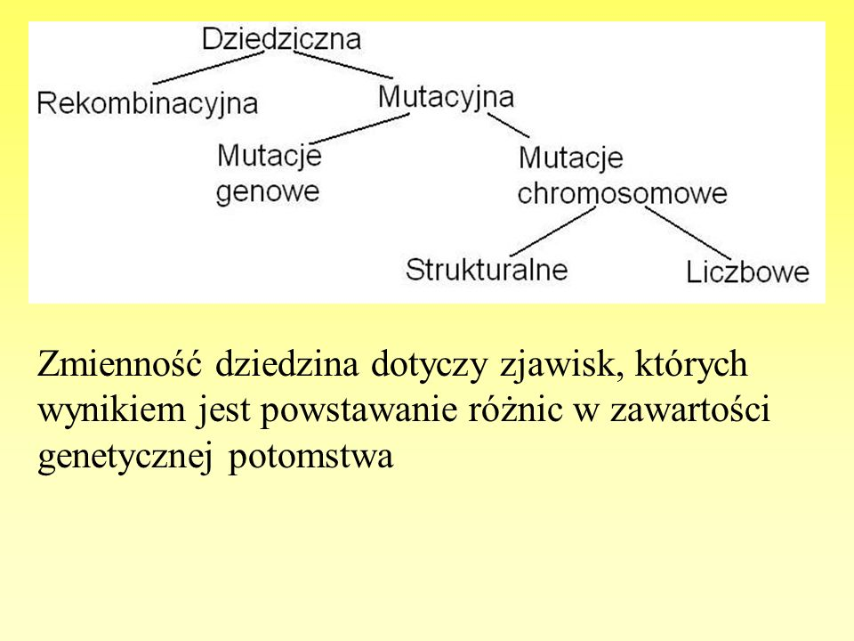 Zmienność dziedzina dotyczy zjawisk, których wynikiem jest powstawanie różnic w zawartości genetycznej potomstwa