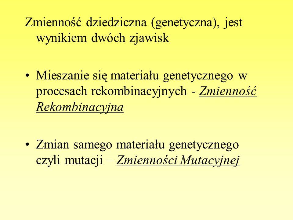 Zmienność dziedziczna (genetyczna), jest wynikiem dwóch zjawisk