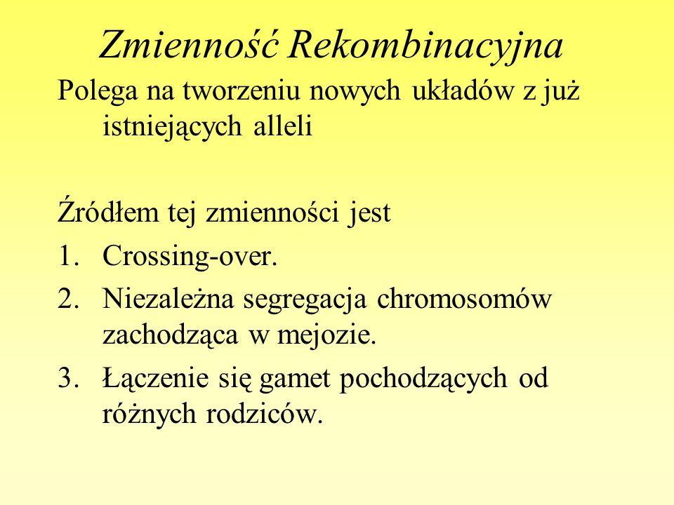 Zmienność Rekombinacyjna