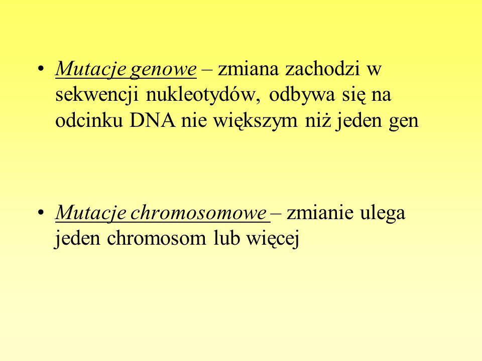 Mutacje genowe – zmiana zachodzi w sekwencji nukleotydów, odbywa się na odcinku DNA nie większym niż jeden gen