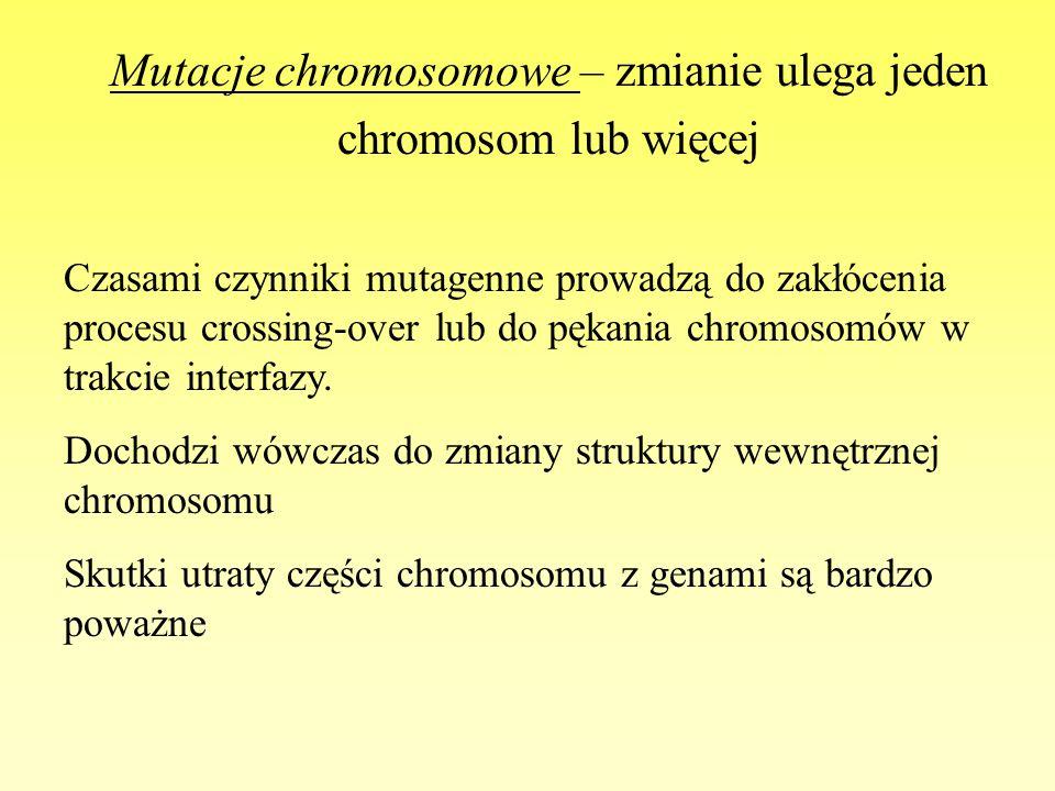 Mutacje chromosomowe – zmianie ulega jeden