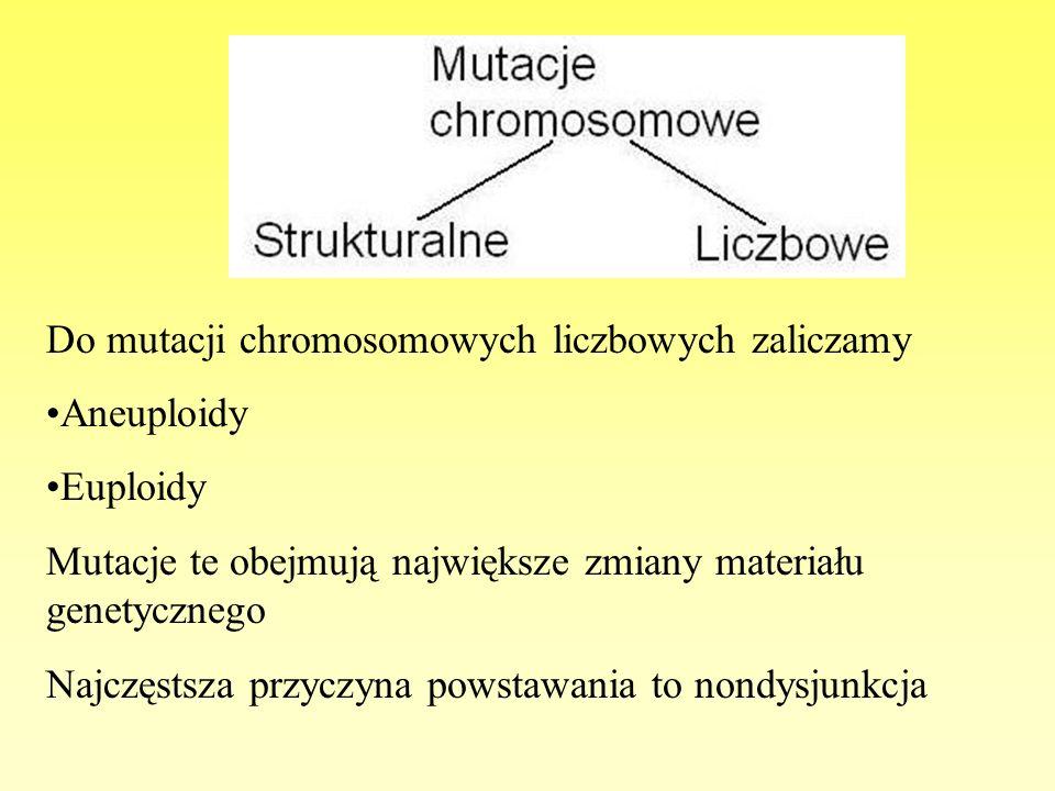 Do mutacji chromosomowych liczbowych zaliczamy